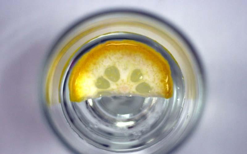 Restauraunt Lemons