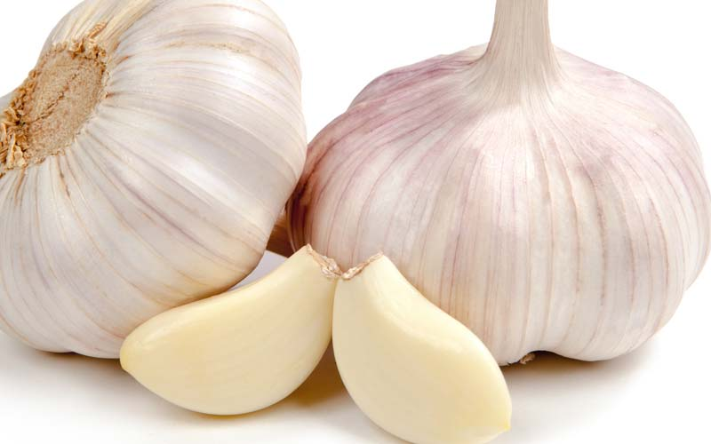 Garlic Serum
