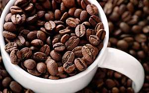 8 Big Benefits of Drinking Coffee